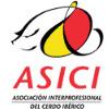 Profesionalización e Internacionalización del Cerdo iIbérico